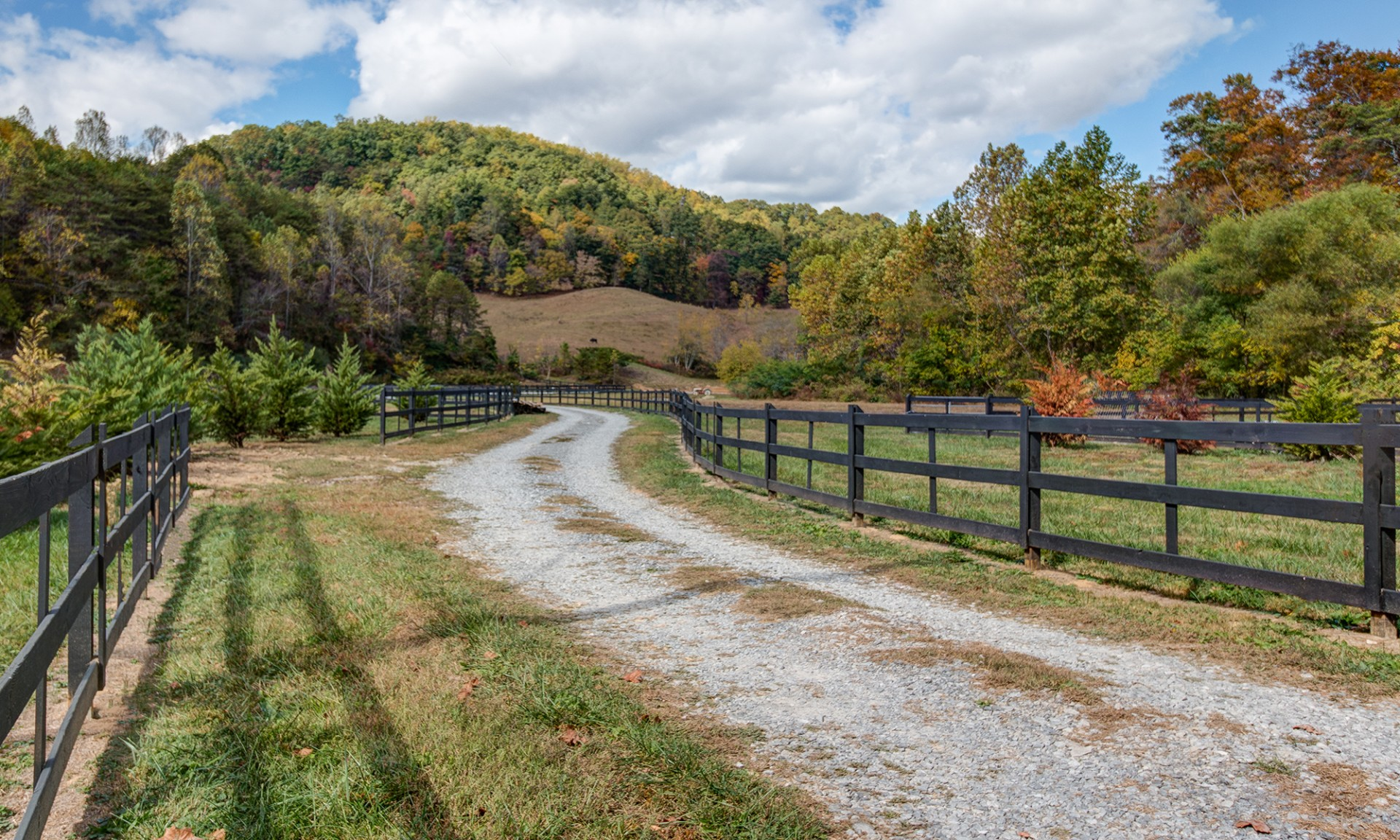 Classic horse fence frames the drive into 4 Points Farm.